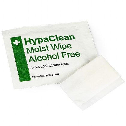 Alcohol Free Moist Wipes (10)