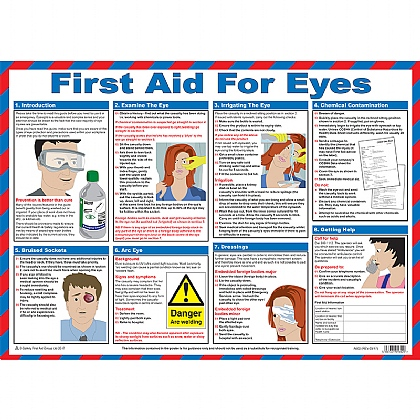 First Aid for Eyes Poster, Laminated