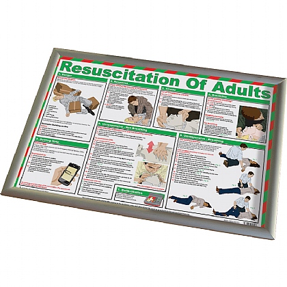 Resuscitation of Adults and CPR Poster with Frame