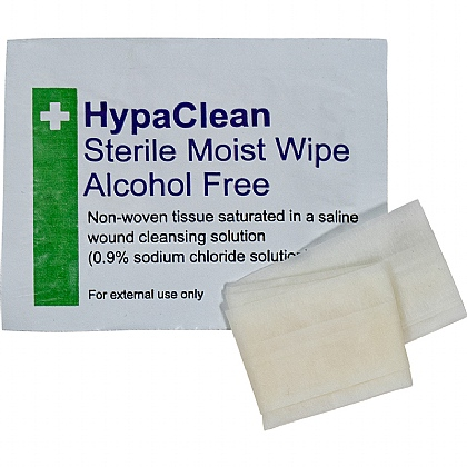 HypaClean Sterile Moist Wipes (10 wipes)