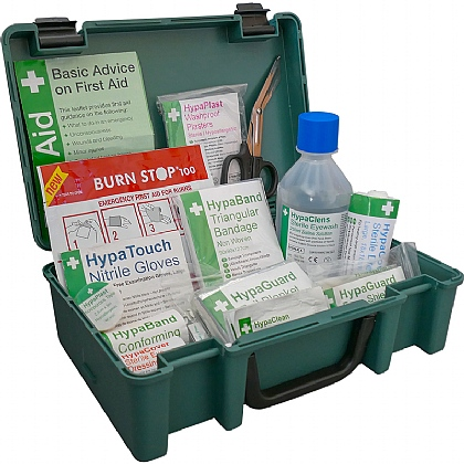British Standard Compliant Economy Travel First Aid Kit